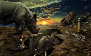 rinoceronte, elefante, ragazza, fantasia