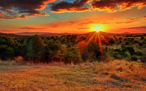 закат, солнце, небо, лучи, поле, холмы, деревья, пейзаж