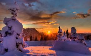 Last Bit Of Light, Paradise Area, Mount Rainier National Park, Washington, USA