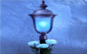lantern, Flowers, wall, art