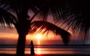 tramonto, mare, palma, ragazza, 3d, arte