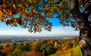Dresden, Dresden, Deutschland, Germany, Germany, city, view, home, bridge, hill, tree, trees, autumn