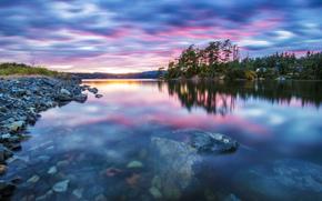 foresta, lago, trasparenza, tramonto, calma
