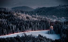 Montagne, foresta, abete rosso, domestico, stradale, inverno, sera, crepuscolo