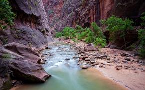 Parco nazionale di Zion, Rocce, fiume, natura, paesaggio