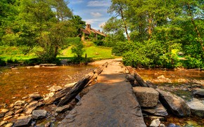 Тарр Шаги, Эксмур Великобритании, река, деревья, пейзаж