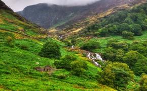 Snowdonia, Regno Unito, Montagne, alberi, fiume, paesaggio