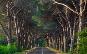 Toscano Strada, Val D'Orcia regione, Toscana, Italia