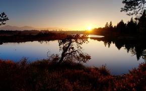 закат, озеро, деревья, пейзаж