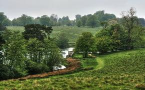 Пейзаж, Англия, Сады, Stourhead, Трава, Природа
