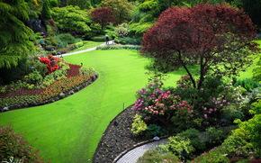Сады, Канада, Butchart, Природа