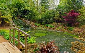 Сады, Англия, Пруд, Secret Blenheim Palace, Природа
