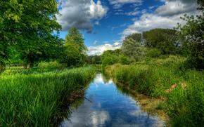 fiume, Itchen, vicino, Di Santa Croce, Winchester, inghilterra, uk, riflessione