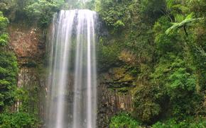 Queensland, Australia, Milla Milla Falls