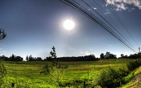field, trees, sky, wire, landscape