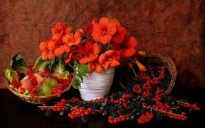 vase, Flowers, fruit, BERRY, still life