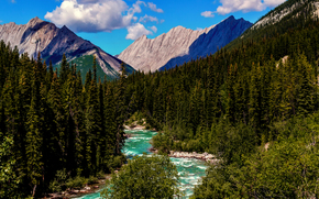 North America, Canada, Alberta, Jasper National Park, Cordilleras, The Rockies, summer, August, forest, river, Mountains, sky, clouds
