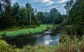 绕线夏季河, 杰里苏里纳公园, 枫树岭, 不列颠哥伦比亚省, 加拿大