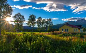 挪威北部, 家, 树, 天空, 景观