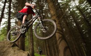 bicicleta, bicicleta, bosque, montaña, ciclismo, ciclismo