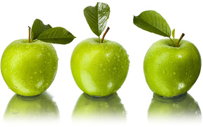 apple, green, papper, leaf, nature, forest, fruit, fruits
