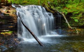 waterfall, trees, Rocks, nature
