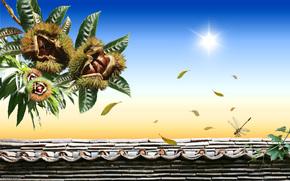 Rendering, 3d, art, chestnuts