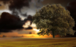 Rendering, 3d, arte, natura