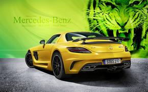 Mercedes-Benz Serie Negro, máquina, Coche