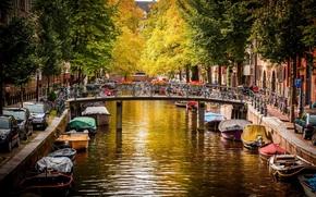 amsterdam, nederland, Amsterdam, Paesi Bassi, città, ponte, Biciclette, macchinario, strada, canale, fiume, acqua, Imbarcazione, alberi, autunno