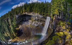 cascata, foresta, paesaggio