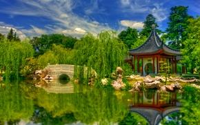 Cina, Cina, giardino, botanica, ponte, pond, riflessione, paesaggio