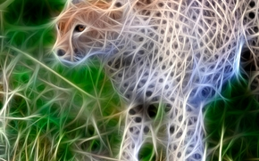 abstraction, cheetah, 3d