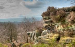 岩石, 树, 景观