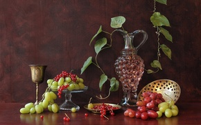 grapes, redcurrant, pitcher, wineglass, wine, foliage, still life