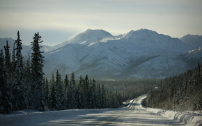 mountains, winter, road, trees