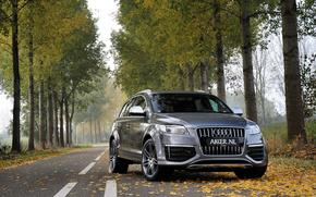 Audi Q7, Ауди, осень, дорога