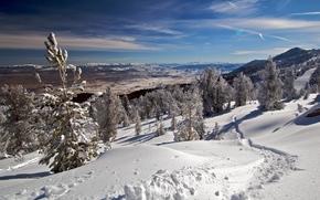 冬天, 雪, 山, 树, 景观