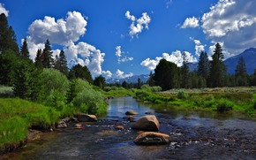 West Fork, Carson River, Hope Valley, Alpine County, California, USA