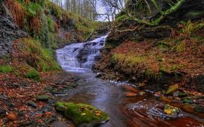 Dean Brook waterfall, Rivington, Lancashire, england, GB