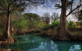Hill, Nazione, Creek, Texas, USA