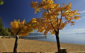 Lake Tahoe, autunno, spiaggia, paesaggio