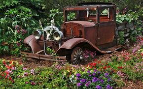 macchina, rattletrap, giardino