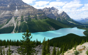 Lac Peyto, Alberta, Canada