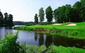 река, деревья, поле для гольфа, пейзаж