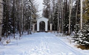 冬天, 公园, 树, 景观
