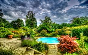花园, 水池, 树, 景观