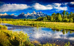 fiume, Montagne, alberi, paesaggio