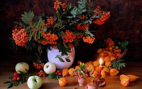 Rowan, apples, candle, still life