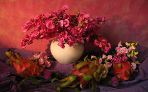 Flowers, ORCHIDS, vase, still life